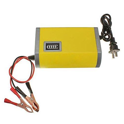 Cargador de bateria para Motocicleta YOUXIN 12V